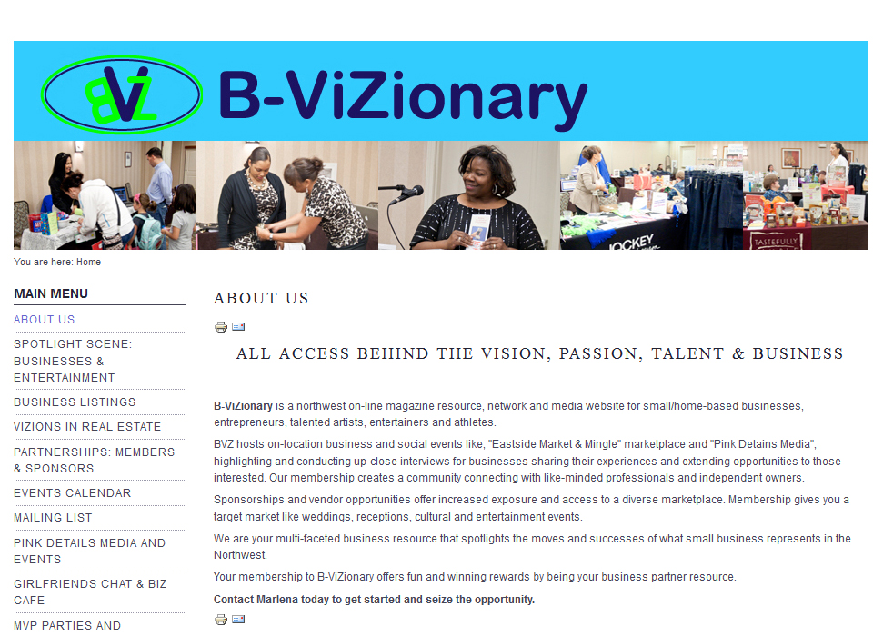 B-ViZionary website