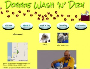 doggywash